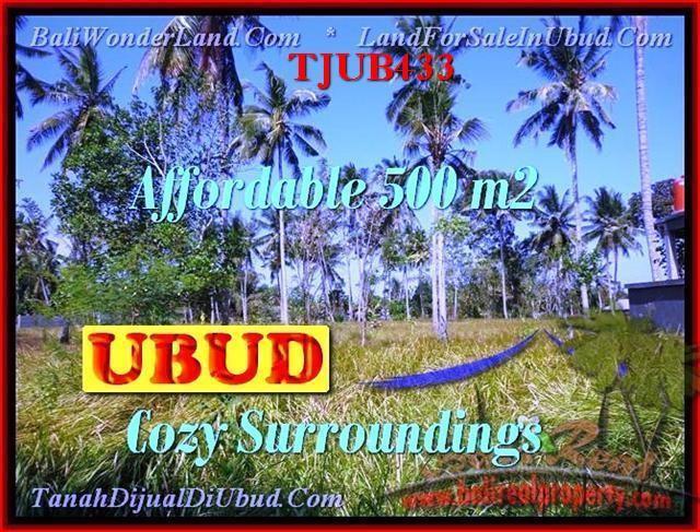 DIJUAL TANAH MURAH di UBUD BALI Untuk INVESTASI TJUB433