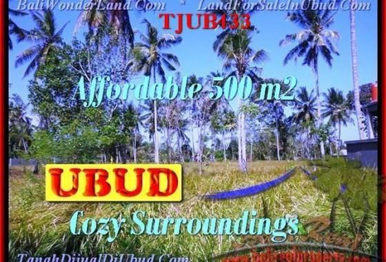 TJUB433-JUAL-TANAH-MURAH-DI-UBUD-UNTUK-INVESTASI-PROPERTI-DI-BALI