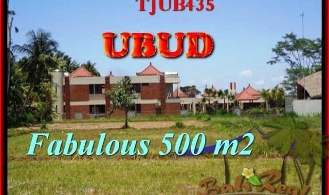 DIJUAL TANAH MURAH di UBUD BALI Untuk INVESTASI TJUB435