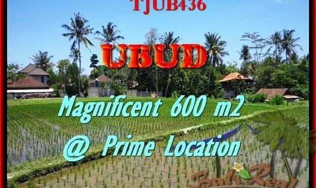 JUAL TANAH MURAH di UBUD BALI 300 m2 View sawah link villa