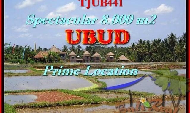 JUAL MURAH TANAH di UBUD BALI 80 Are View Sawah, Sungai, Gunung