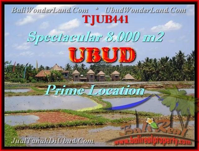 JUAL MURAH TANAH di UBUD BALI Untuk INVESTASI TJUB441