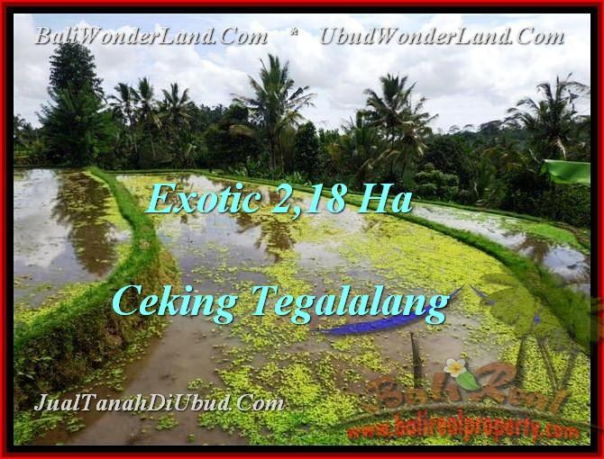 JUAL MURAH TANAH di UBUD BALI 21,800 m2 di Ubud Tegalalang