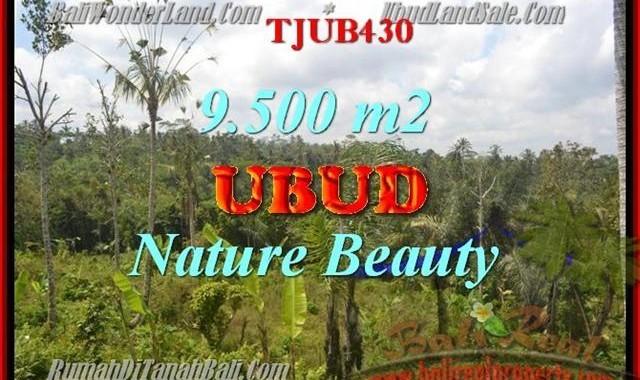 DIJUAL TANAH MURAH di UBUD BALI Untuk INVESTASI TJUB430