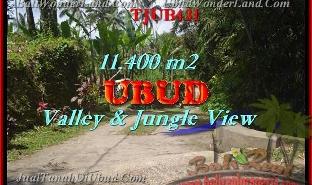 TANAH MURAH di UBUD DIJUAL 11,400 m2 di Ubud Payangan