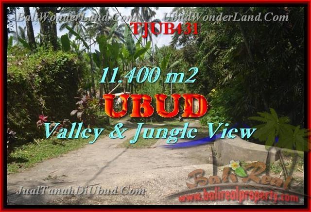 TANAH DIJUAL di UBUD 114 Are di Ubud Payangan