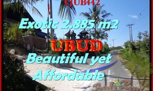 DIJUAL TANAH MURAH di UBUD BALI 28,85 Are di Ubud Pejeng