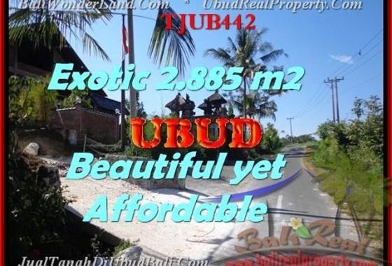INVESTASI PROPERTY, JUAL MURAH TANAH di UBUD BALI TJUB442