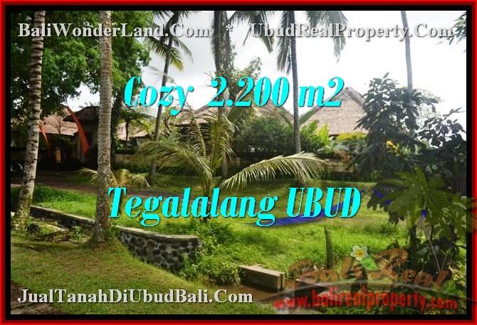 JUAL MURAH TANAH di UBUD BALI 2,200 m2  View Sawah dan sungai link Villa