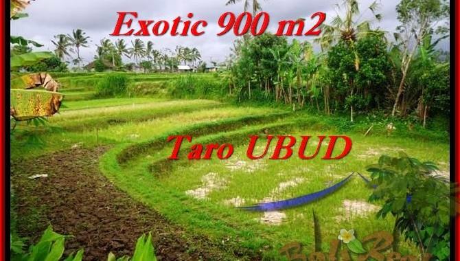 TANAH DIJUAL di UBUD BALI 900 m2 di Ubud Tegalalang
