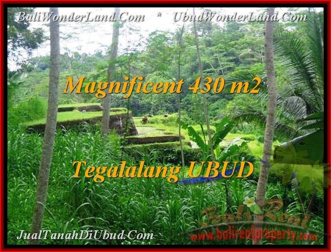 JUAL TANAH MURAH di UBUD BALI 430 m2  View sawah sungai link Villa