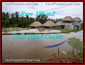 TANAH MURAH di UBUD 350 m2 di Ubud Tegalalang