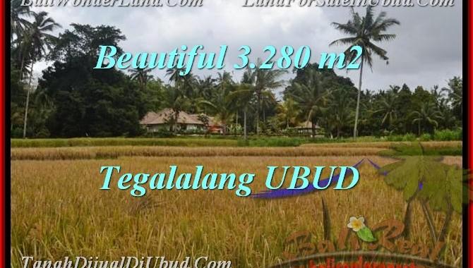 JUAL TANAH MURAH di UBUD 3,280 m2 View Sawah link Villa