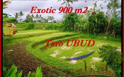 TANAH MURAH di UBUD Untuk INVESTASI TJUB464