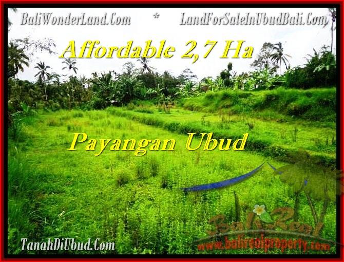 TANAH di UBUD BALI DIJUAL 27,000 m2  View Kebun dan tebing, sungai