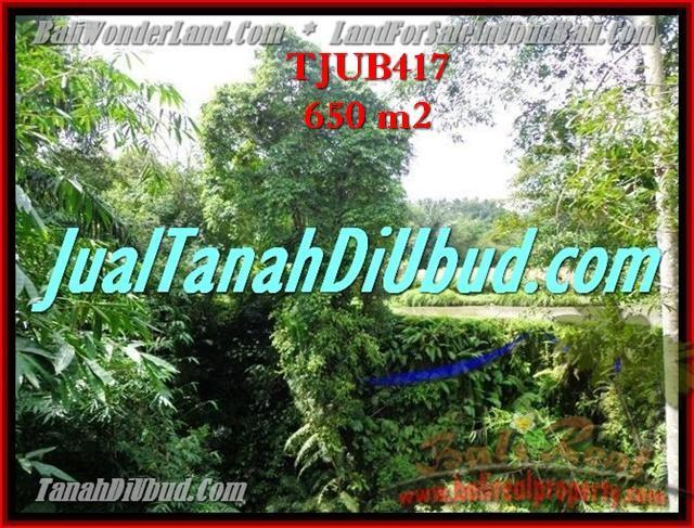 JUAL MURAH TANAH di UBUD BALI TJUB417