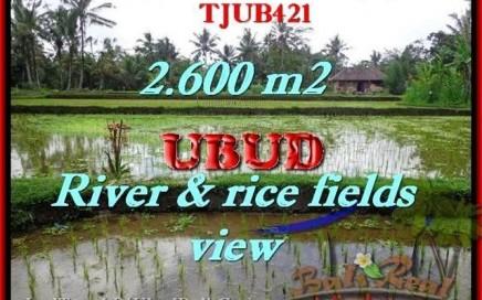INVESTASI PROPERTY, TANAH MURAH di UBUD TJUB421
