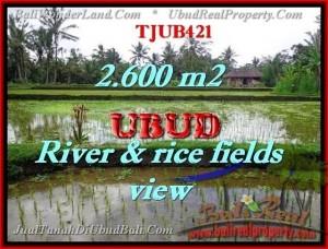 JUAL MURAH TANAH di UBUD Untuk INVESTASI TJUB421