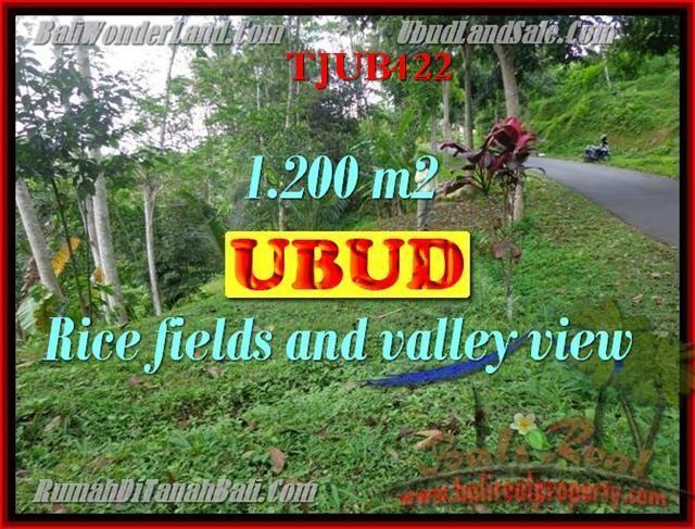 TANAH DIJUAL di UBUD Untuk INVESTASI TJUB422