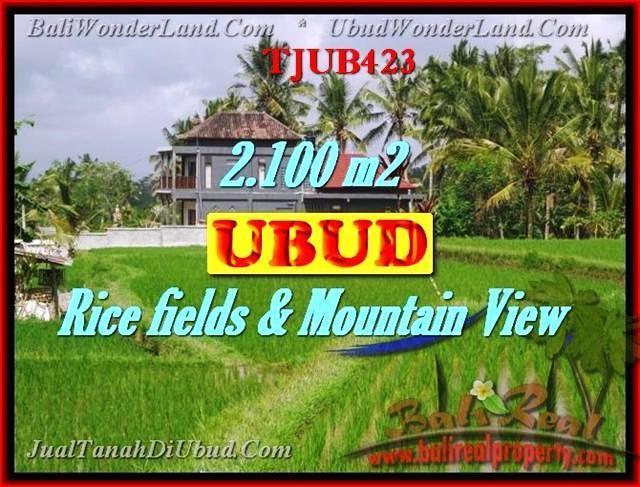 TANAH DIJUAL di UBUD Untuk INVESTASI TJUB423