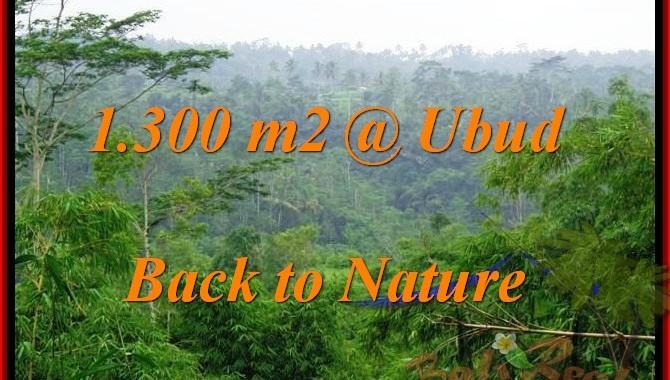 JUAL MURAH TANAH di UBUD 1,300 m2 View Tebing dan Kebun
