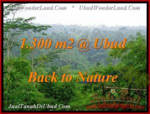 TANAH di UBUD BALI DIJUAL 1,300 m2 di Ubud Tegalalang