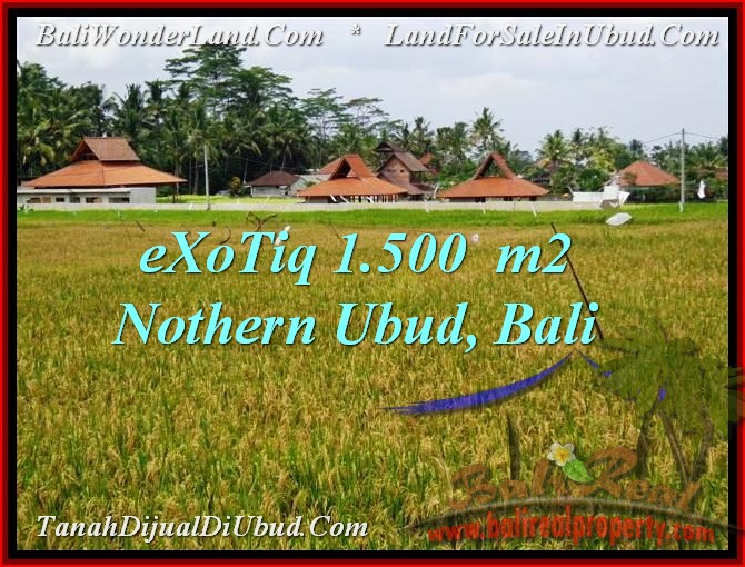TANAH MURAH di UBUD 1,500 m2 di Sentral Ubud