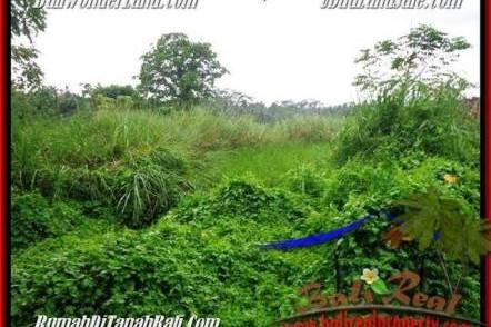 DIJUAL TANAH MURAH di UBUD 2,600 m2 di Sentral Ubud