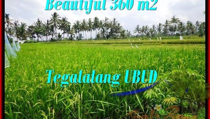JUAL MURAH TANAH di UBUD Untuk INVESTASI TJUB482