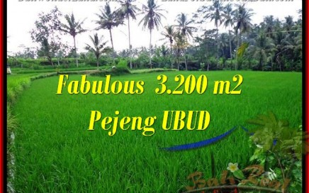 TANAH DIJUAL MURAH di UBUD BALI 3,200 m2 di Ubud Pejeng