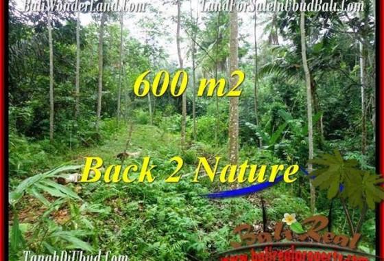 TANAH JUAL MURAH UBUD 6 Are View Tebing dan kebun