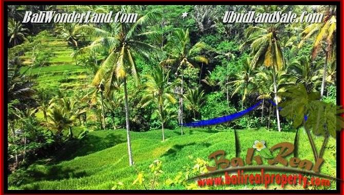 JUAL TANAH di UBUD Untuk INVESTASI TJUB496