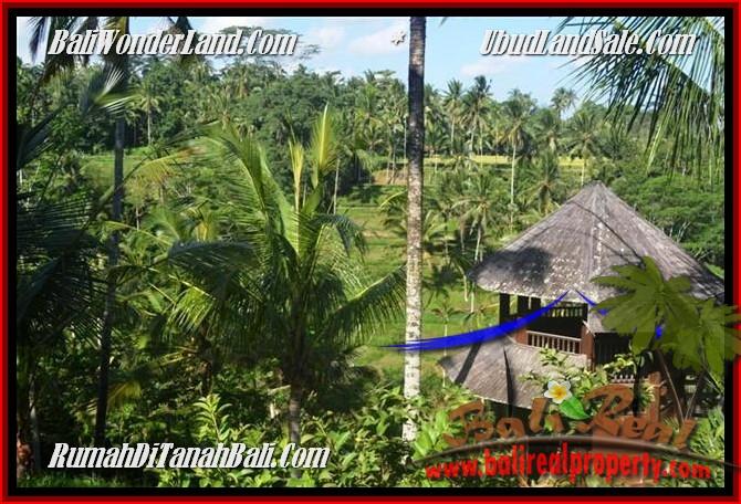 JUAL MURAH TANAH di UBUD BALI 25 Are View Tebing,sawah Link Villa