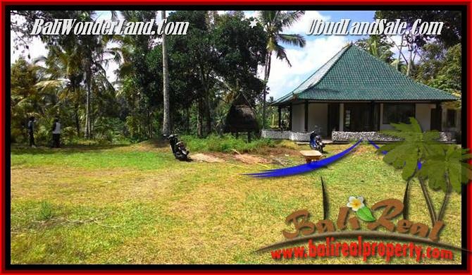TANAH di UBUD BALI DIJUAL 25 Are View Tebing,sawah Link Villa