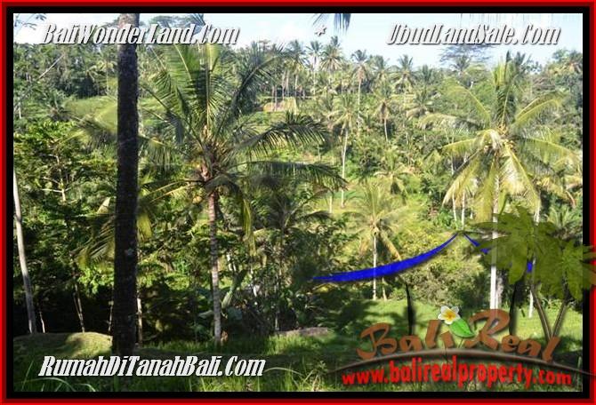 JUAL MURAH TANAH di UBUD 25 Are View Tebing,sawah Link Villa