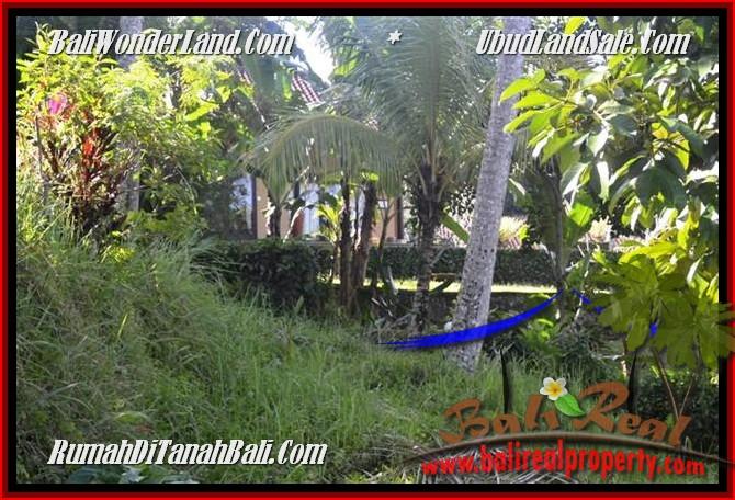 JUAL MURAH TANAH di UBUD 2,500 m2 View Tebing,sawah Link Villa