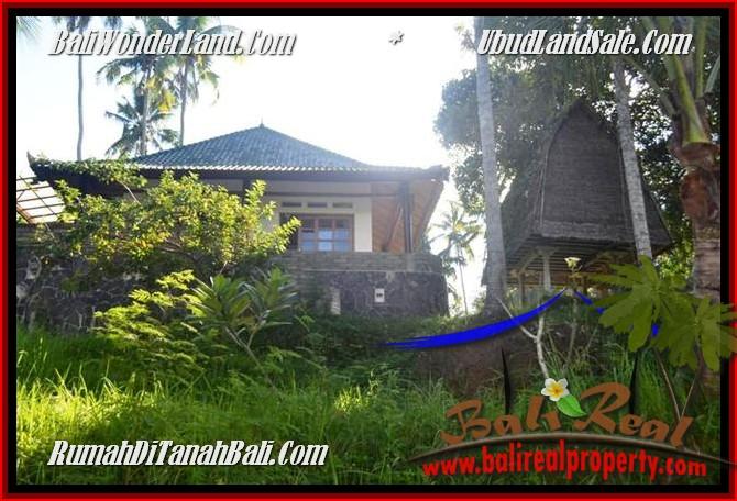 DIJUAL TANAH MURAH di UBUD Untuk INVESTASI TJUB496