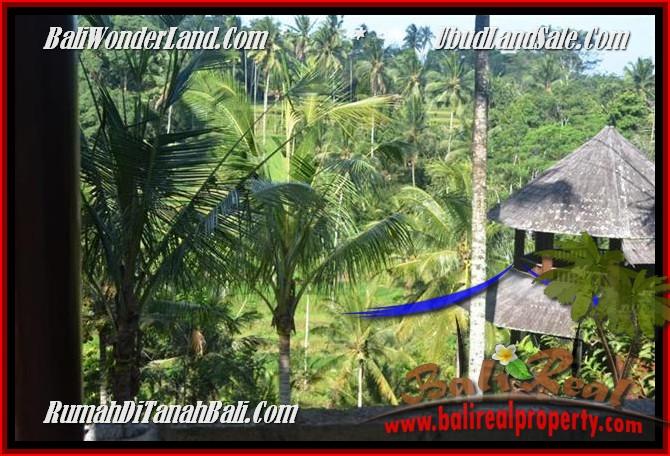 TANAH DIJUAL MURAH di UBUD BALI 2,500 m2 di Ubud Tegalalang