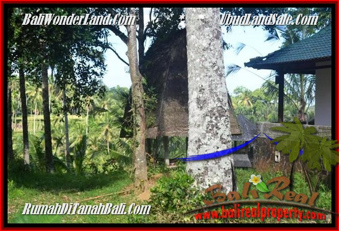 DIJUAL TANAH di UBUD 2,500 m2 di Ubud Tegalalang