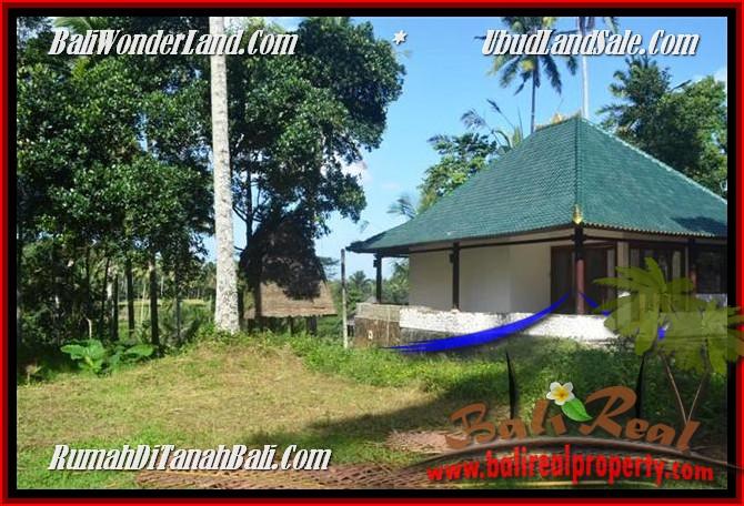 JUAL TANAH di UBUD BALI 25 Are View Tebing,sawah Link Villa
