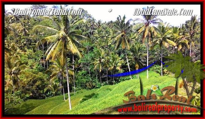 TANAH MURAH JUAL UBUD 25 Are View Tebing,sawah Link Villa
