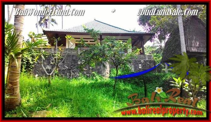 TANAH MURAH di UBUD JUAL 25 Are View Tebing,sawah Link Villa