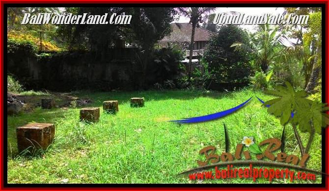 TANAH di UBUD BALI DIJUAL 2,500 m2 di Ubud Tegalalang
