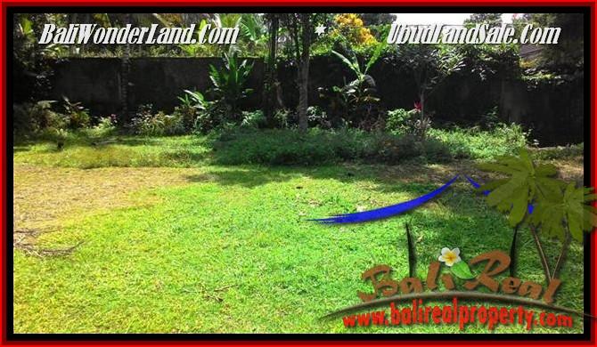 TANAH MURAH di UBUD BALI 25 Are View Tebing,sawah Link Villa