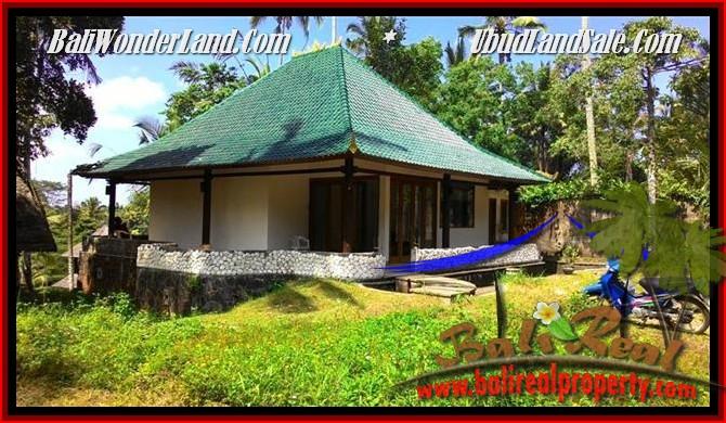 JUAL MURAH TANAH di UBUD Untuk INVESTASI TJUB496