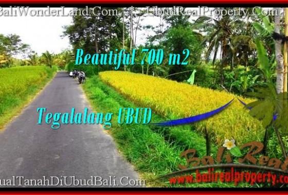TANAH MURAH di UBUD BALI Untuk INVESTASI TJUB497