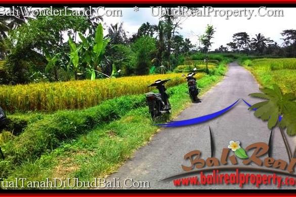 DIJUAL TANAH MURAH di UBUD Untuk INVESTASI TJUB497