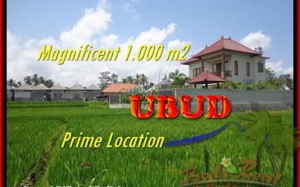 TANAH MURAH di UBUD 10 Are di Sentral Ubud
