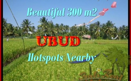 TANAH DIJUAL di UBUD 300 m2 View sawah link villa