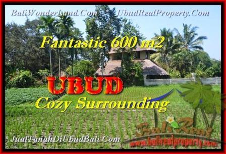 TANAH DIJUAL di UBUD BALI 600 m2 View sawah link Villa